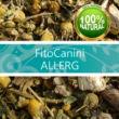ALLERGIA elleni - FitoCanini - gyógynövény-keverék por