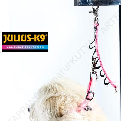 KUTYAKOZMETIKAI RÖGZÍTŐ KÉSZLET - rögzítő adapter + rögzítő póráz – JULIUS-K9®