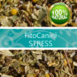 STRESS - FitoCanini