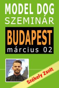MODEL DOG Szeminár - Budapest