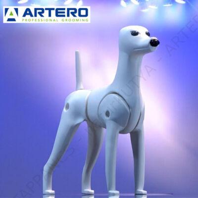 MODEL KUTYA – szőr nélküli bábú - ARTERO